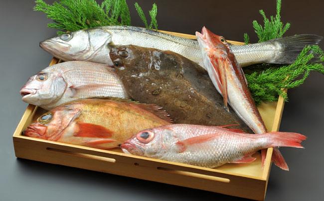 胸が小さい人の悩みである、バストアップの方法には魚も食べないと